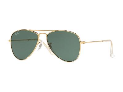 Sunglasses Ray-Ban RJ9506S -  223/71