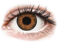 Alensa.com.mt - Contact lenses - Brown Honey contact lenses - natural effect - Air Optix