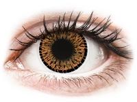 Alensa.com.mt - Contact lenses - Brown Elegance contact lenses - ColourVue