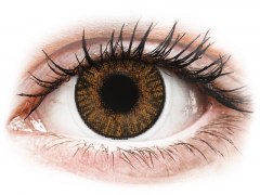 Brown Honey contact lenses - FreshLook ColorBlends (2 monthly coloured lenses)