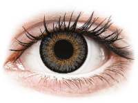Alensa.com.mt - Contact lenses - Grey contact lenses - FreshLook One Day Color