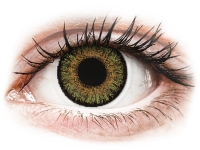 Alensa.com.mt - Contact lenses - Pure Hazel contact lenses - FreshLook One Day Color